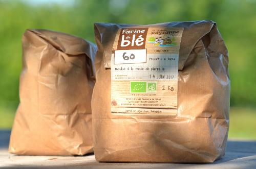 Farine de blé noir (sarrasin)  1Kg