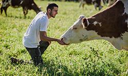 Respect du bien-être animal