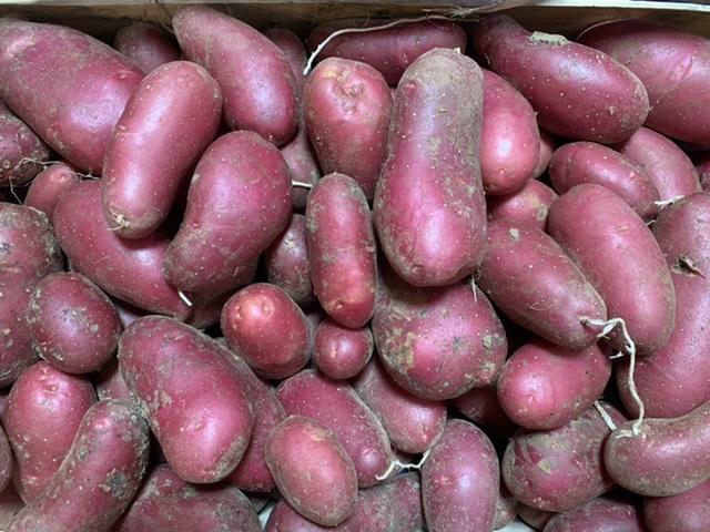 """Pomme de terre ferme """"Chayenne"""" BIO 1kg"""