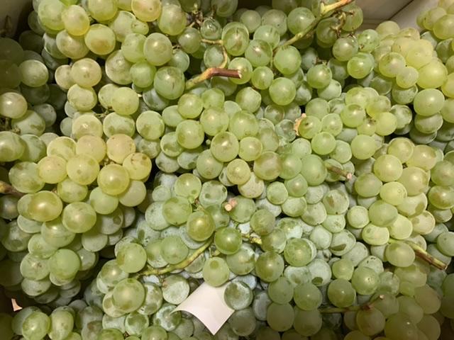 Raisin blanc Chasselat 500g