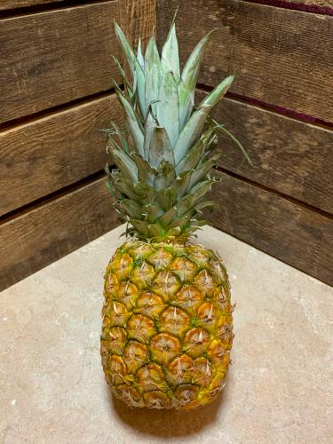 Ananas sweet pce