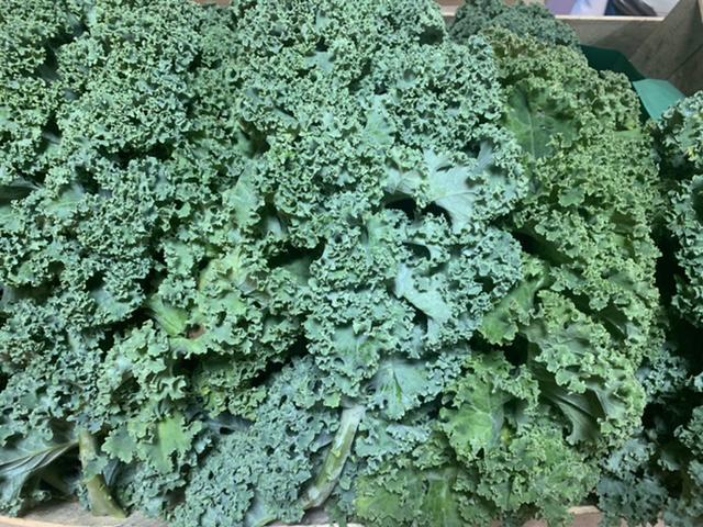 Chou Kale Bio 500g