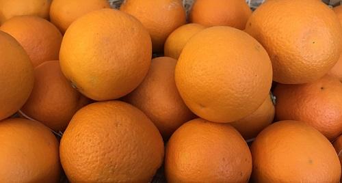 Orange à jus 5 kg