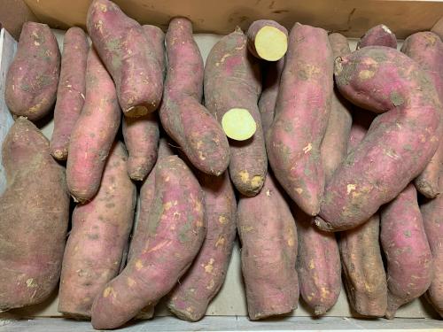 Patate douce blanche en conversion 500gr