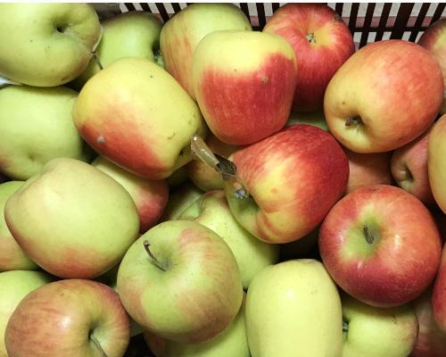 Pomme Delbard estivale 500g