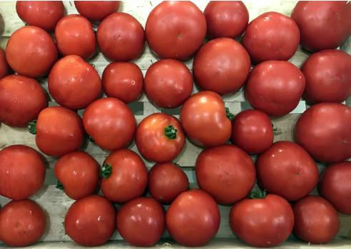 Tomates rondes BIO 500g