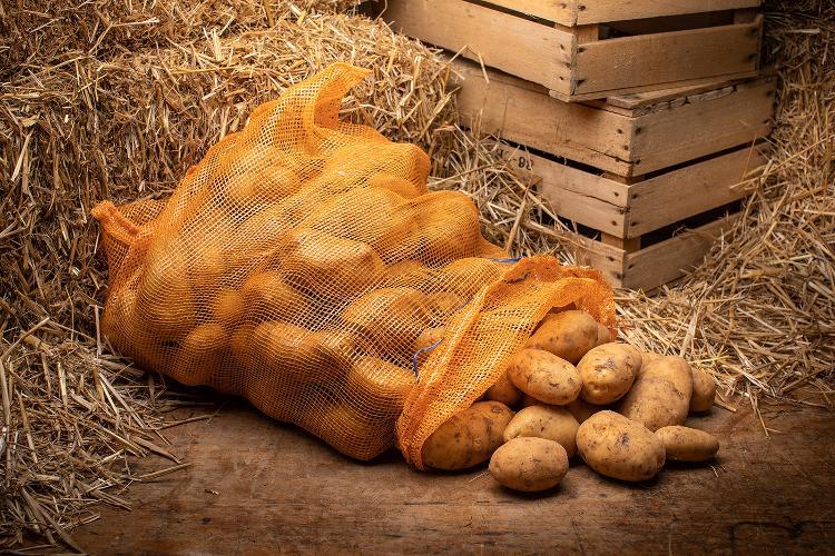 pommes de terre  polyvalentes filet 25kg du Jardin des Saveurs