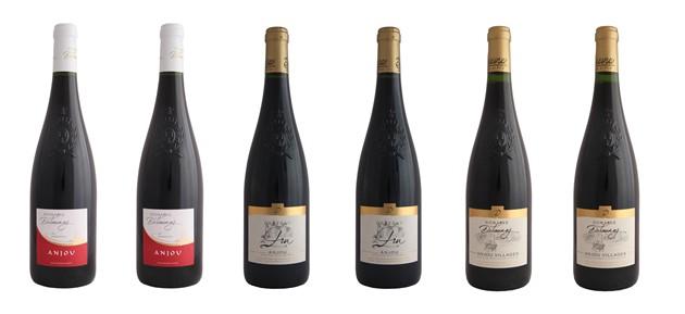 Carton 6 bouteilles panachées Vins Rouges - Delaunay