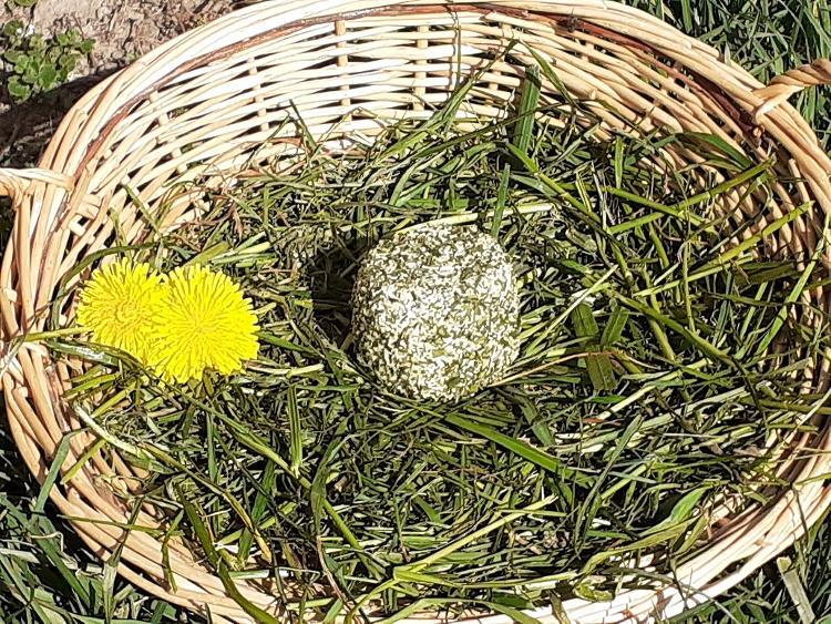 Fromage frais moulé Ail et Fines Herbes