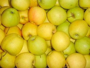 Pommes golden 2 Kg