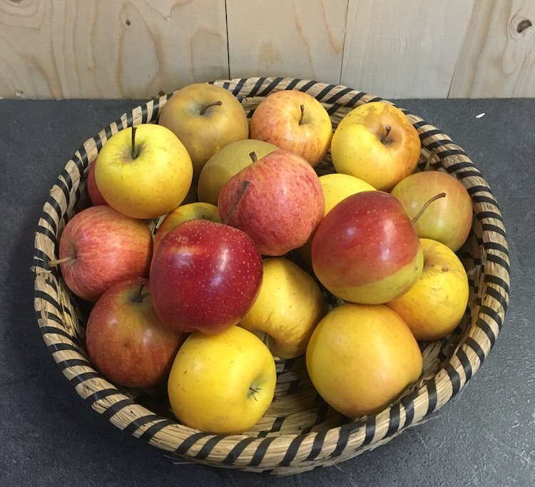 Pommes mélange  CAISSE 10 Kg