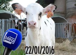 Interwiew sur Radio France Bleu Loire Océan, janvier 2016
