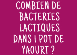 1.25 milliards de bactéries lactiques dans 1 pot de yaourt