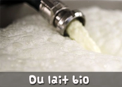 Du lait bio