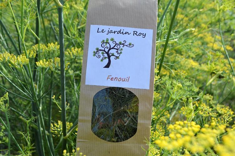 Fenouil (feuilles)