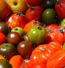 Tomates mélanges