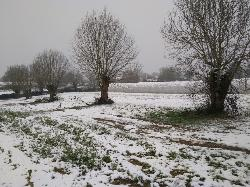 le jardin sous la neige 1
