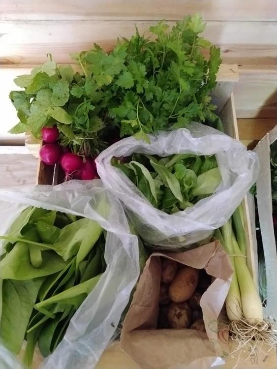 Panier de Légumes PETIT  (Doudoutière)