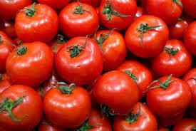Tomates de France Ronde de Francoise