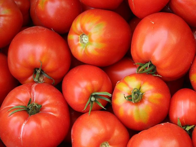Tomate ronde rouge