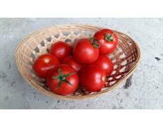 Tomates Rondes - 1kg