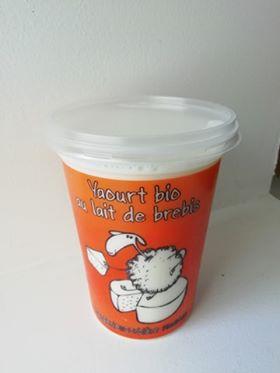 Yaourt Bio nature au lait de brebis 500g