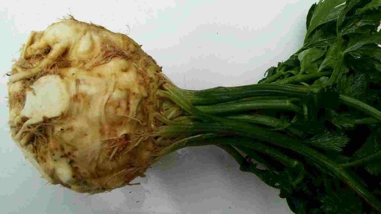 Celeri Rave et Feuille