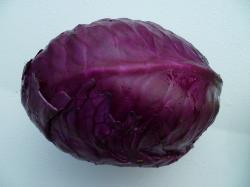 Choux Cabu Rouge 1.2kg environ