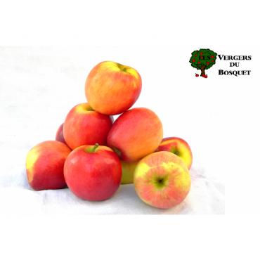 Pomme Crimson BIO colis de 2 kg