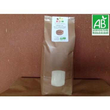 Farine de Petit épeautre BIO - BISE - 1 kg