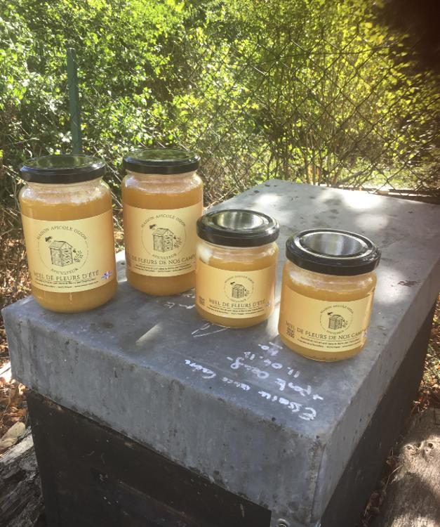 Miel de Brenne 500g (ronces et fleurs sauvages) - Maison Apicole OIZON