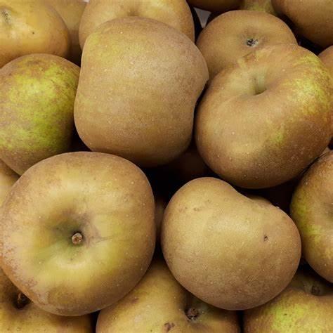 Pommes CANADA GRIS - calibre 136 - 1kg