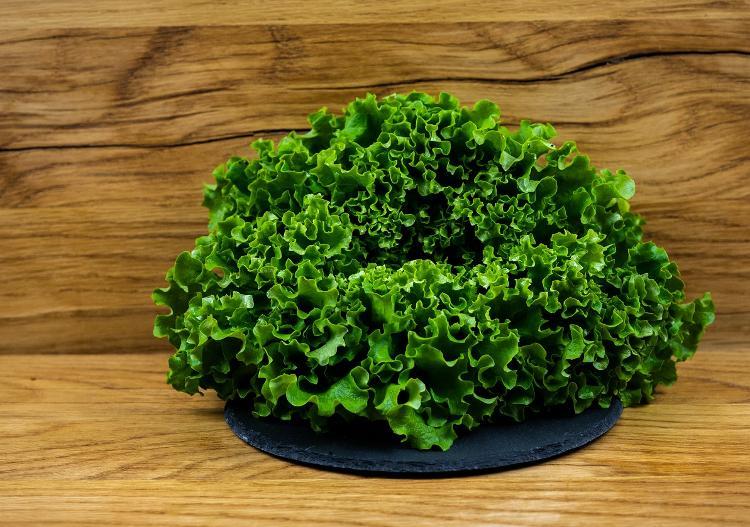 Salade batavia verte (BIOLAND Batavia grün)