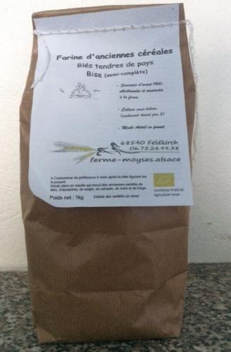 farine de blés variétés anciennes bise