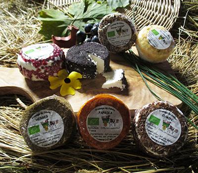 Fromage Chèvre frais Herbes de Provence