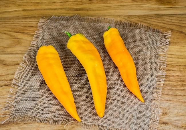 Poivrons Pointus Jaune (BIOLAND Paprika spitz gelb)