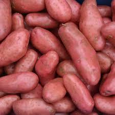 Pommes de terre la Chérie