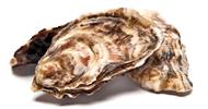 Huîtres creuses N°2 (grosses) la douzaine