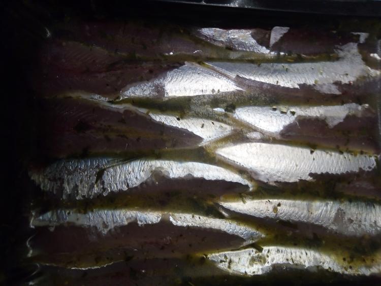 Sardine en persillade prête à cuire