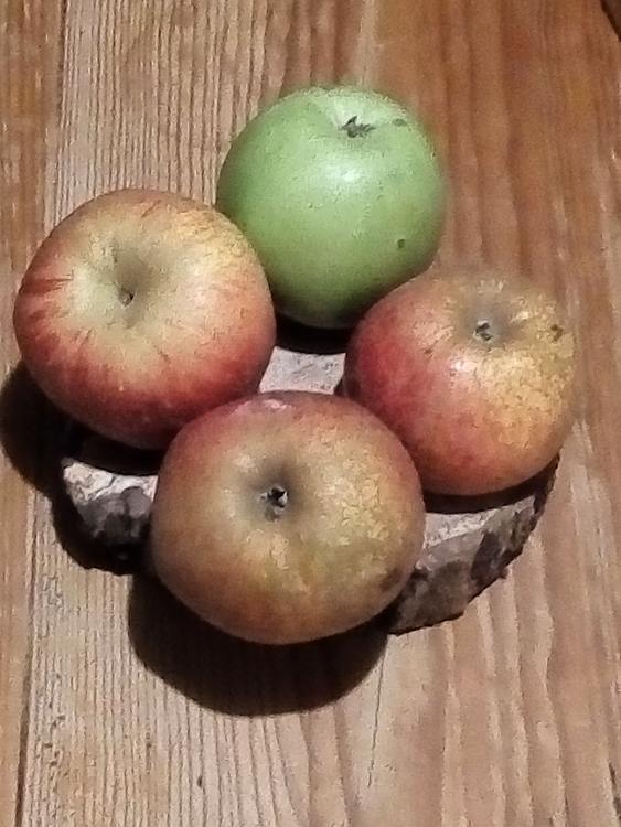310#Mixte  de pomme