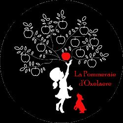 Jus de Pomme Rhubarbe  - Pommeraie d'Oxelaëre ( 25 cl )