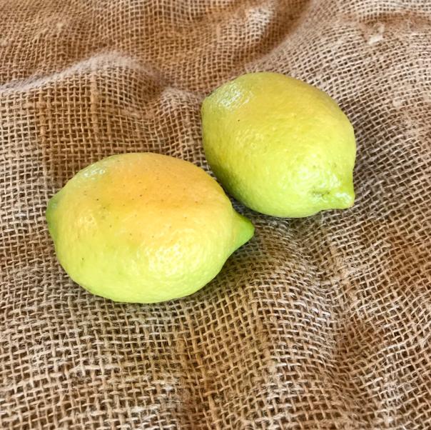 Citrons bio, lot de 500g