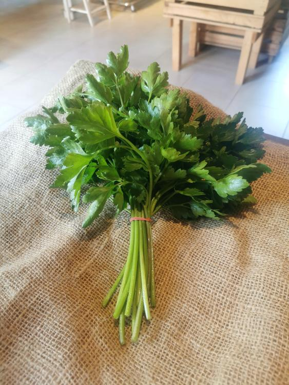 Bouquet de persil plat - 75g
