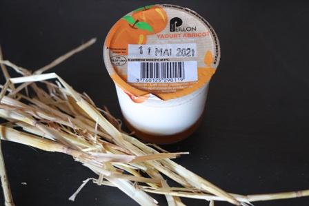 Yaourt Abricot - pot individuel 125g
