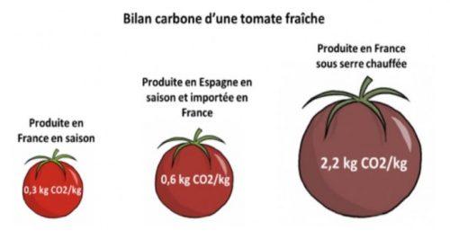 La saison des tomates bio, c'est de juin à octobre !