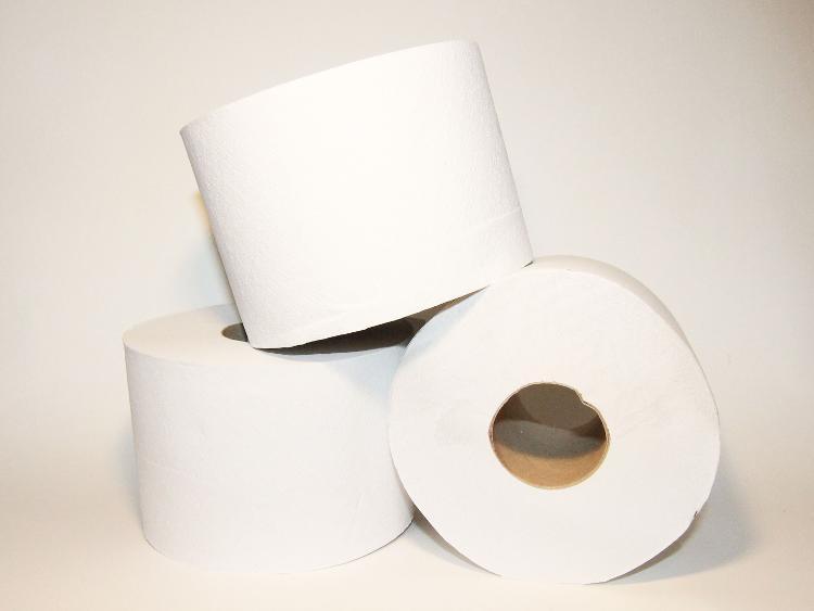 Papier toilette 600 feuilles