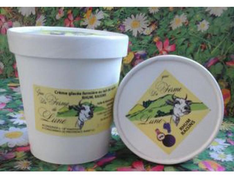 Crème glacée fermière RHUM RAISINS 480ml