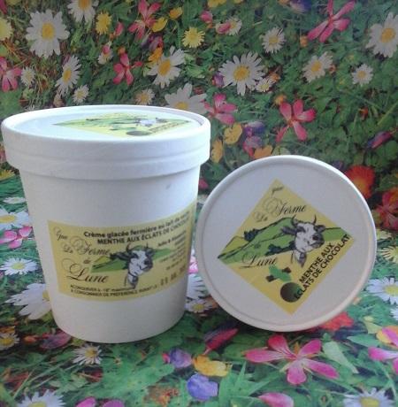 Crème glacée fermière MENTHE CHOCOLAT 200ml