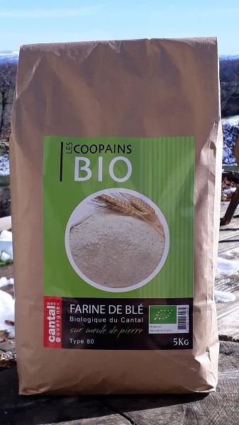 Farine de blé BIO sur meule de pierre (5 kg)