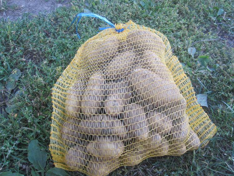 Pomme de terre Rosabelle (3kg) des Jardins  de Jurlhes